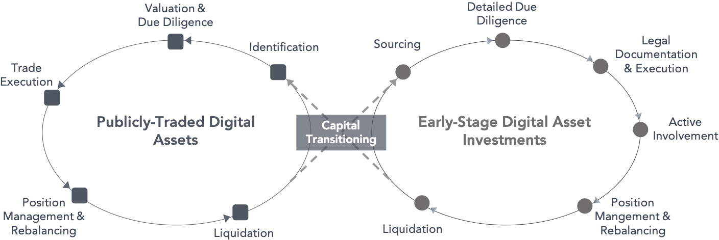 Capital Transition Diagram